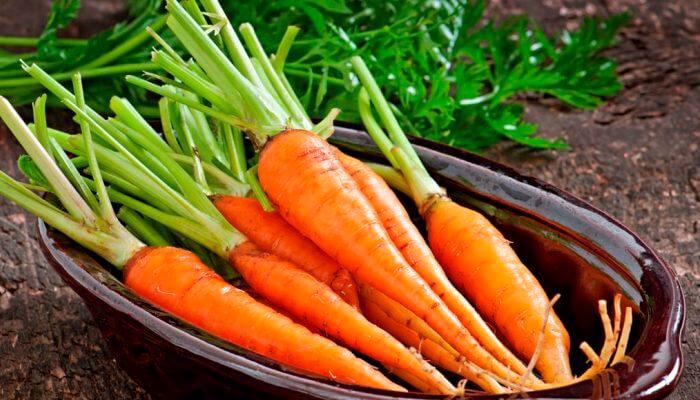 Zanahoria 13 Propiedades Y Beneficios Saludables Comprobados Es la forma domesticada de la zanahoria silvestre, oriunda de europa y asia sudoccidental. zanahoria 13 propiedades y beneficios