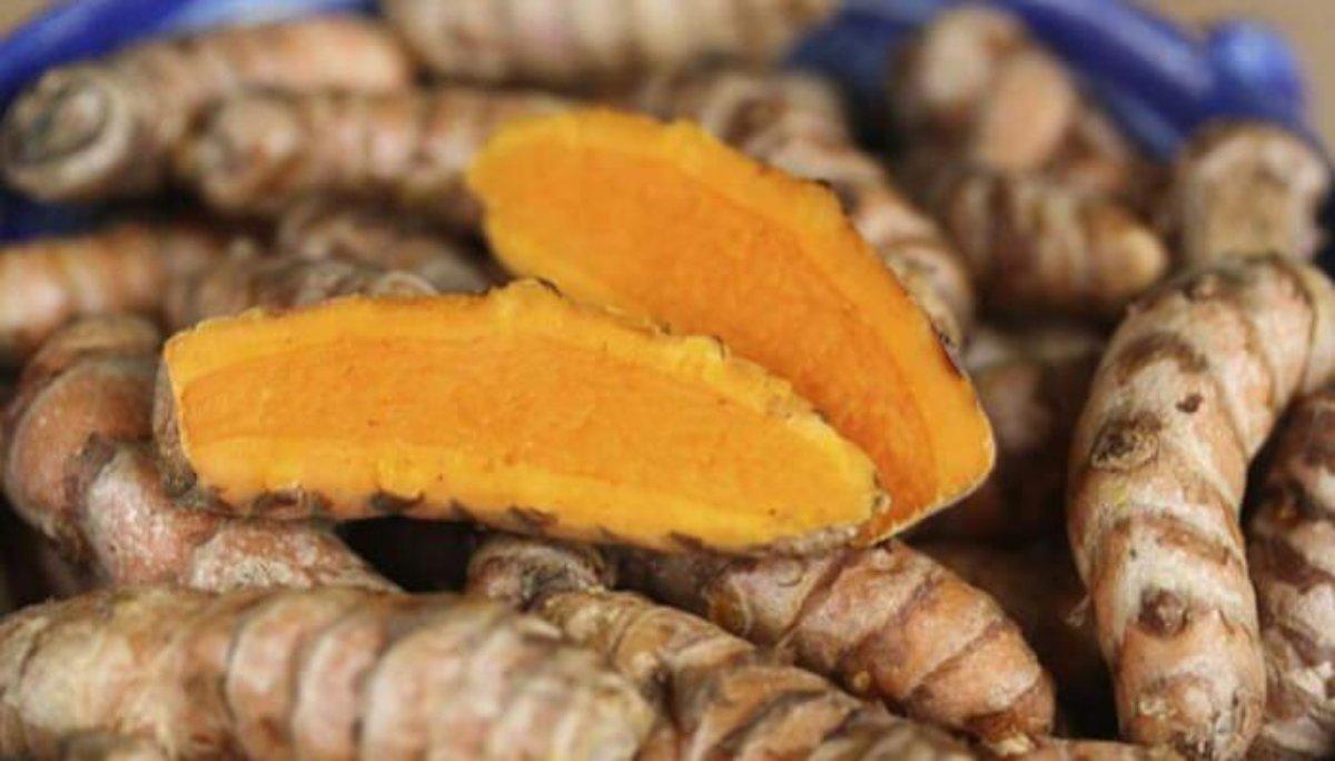 medicina tradicional india para la diabetes
