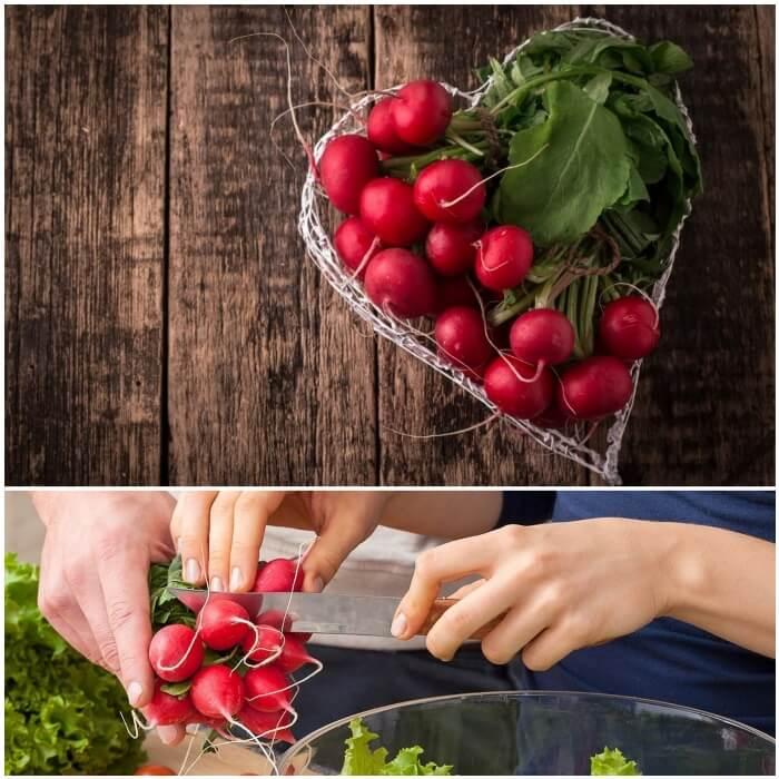 propiedades saludables del rábano