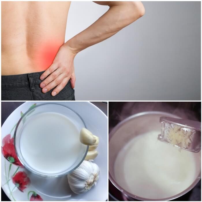 Propiedades y beneficios de la leche con ajo